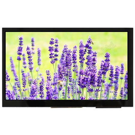 Display Winstar WF70QTIFGDBG0 TFT 7""